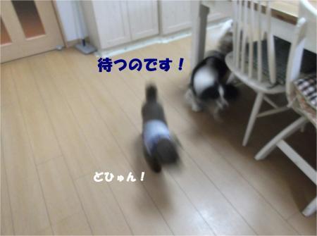 04_convert_20140512181402.jpg