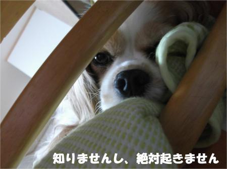 04_convert_20140522180639.jpg