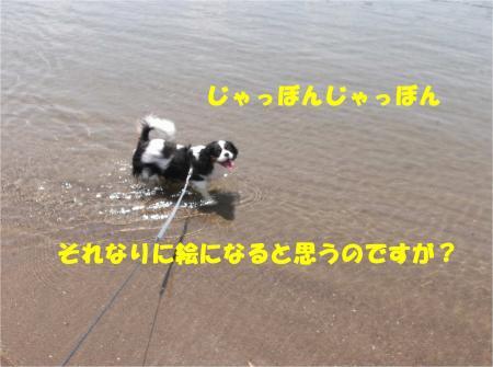 04_convert_20140526173302.jpg