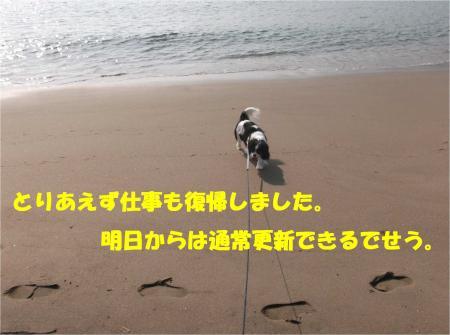 04_convert_20140604193305.jpg