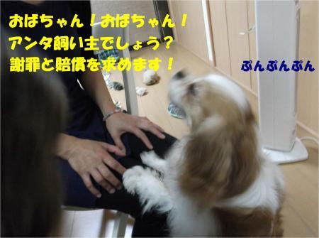 04_convert_20140605181505.jpg