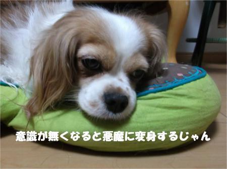 04_convert_20140606190326.jpg