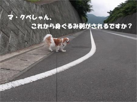 04_convert_20140623160900.jpg