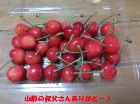 04_convert_20140626181429.jpg