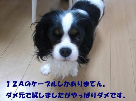 04_convert_20140627183732.jpg