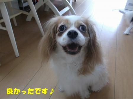 04_convert_20140630180018.jpg