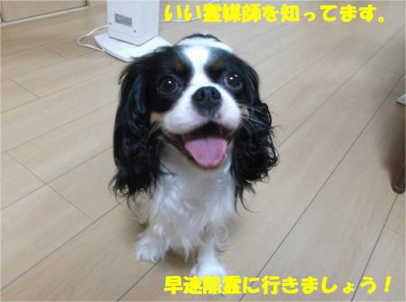 04_convert_20140723223237.jpg