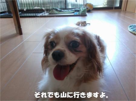 04_convert_20140728171724.jpg