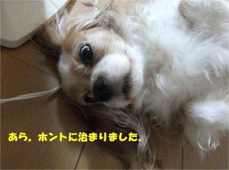 04_convert_20140801173705.jpg