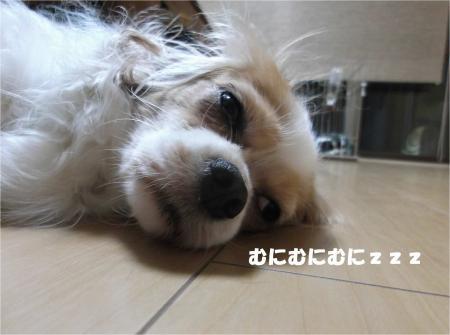 04_convert_20140808180136.jpg