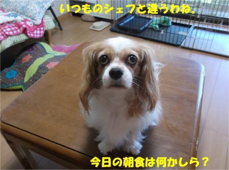 04_convert_20140820170752.jpg