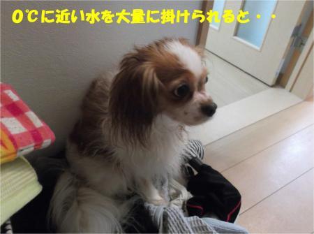 04_convert_20140822180828.jpg