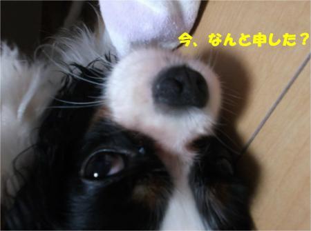 04_convert_20140828180734.jpg