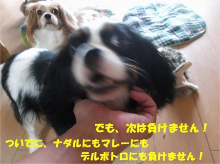 04_convert_20140909175600.jpg