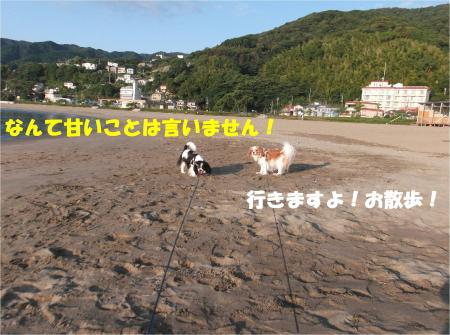 04_convert_20140916182751.jpg