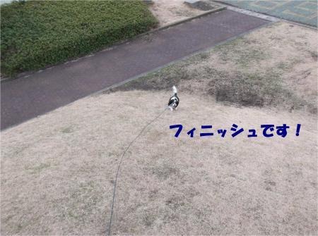 05_convert_20140212205922.jpg