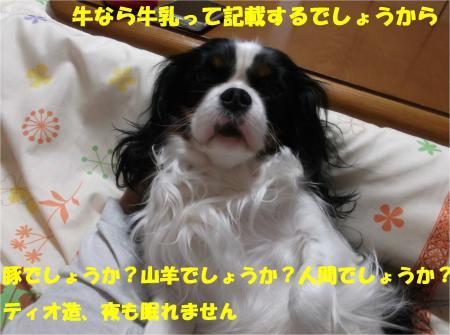 05_convert_20140222143618.jpg