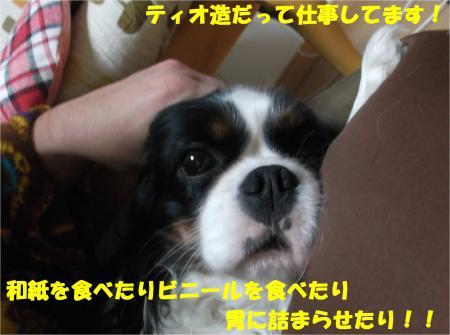 05_convert_20140307171951.jpg