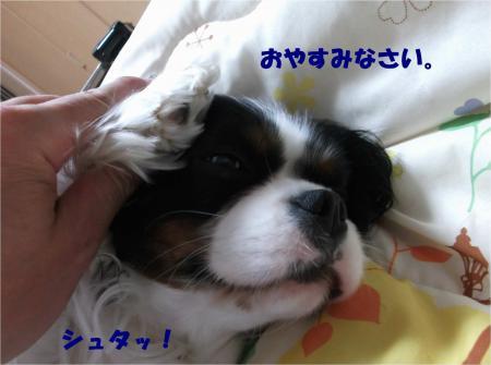 05_convert_20140326180955.jpg