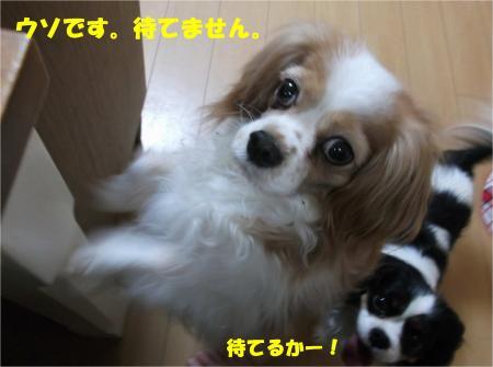 05_convert_20140508192112.jpg