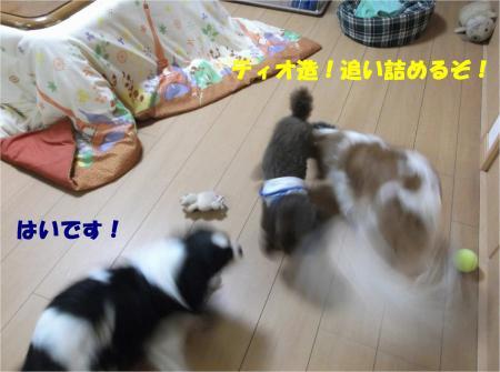 05_convert_20140512181410.jpg