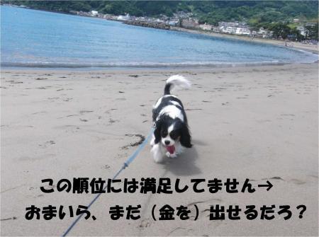 05_convert_20140609182950.jpg