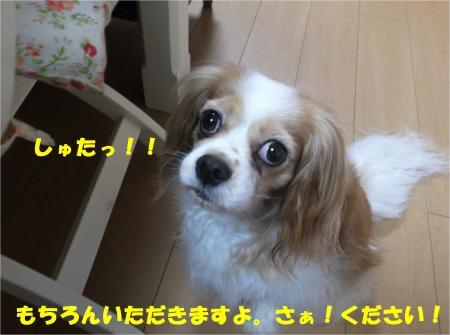 05_convert_20140626181438.jpg