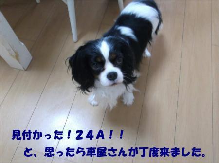 05_convert_20140627183741.jpg