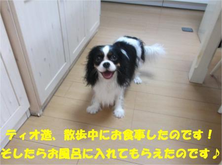 05_convert_20140630180027.jpg