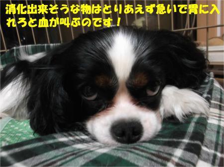 05_convert_20140708173017.jpg