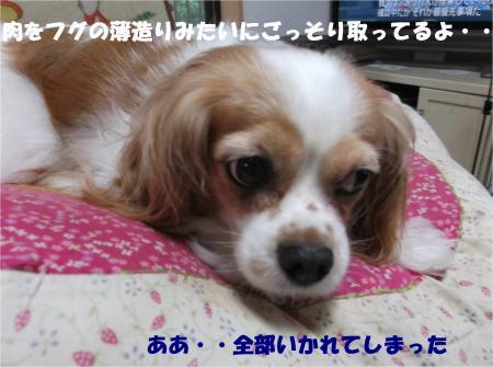 05_convert_20140718174923.jpg