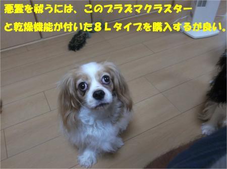 05_convert_20140723223256.jpg
