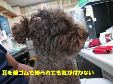 05_convert_20140729182850.jpg