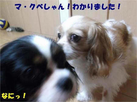 05_convert_20140731173946.jpg