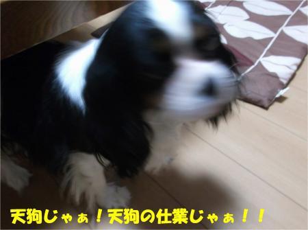 05_convert_20140828180744.jpg