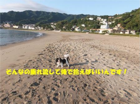 05_convert_20140916182801.jpg