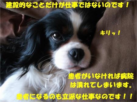 06_convert_20140307172001.jpg