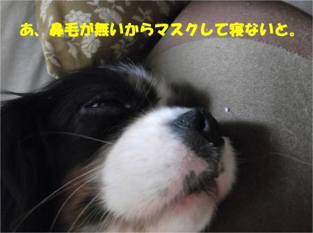 06_convert_20140326181005.jpg