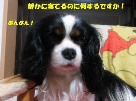06_convert_20140430184340.jpg