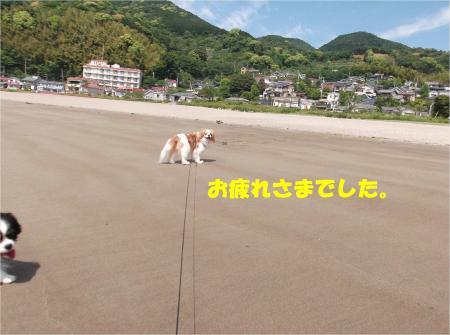 06_convert_20140519161645.jpg