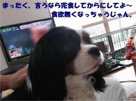 06_convert_20140521181655.jpg
