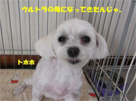 06_convert_20140523181109.jpg