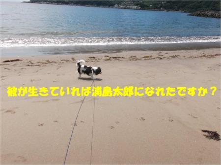 06_convert_20140611175058.jpg