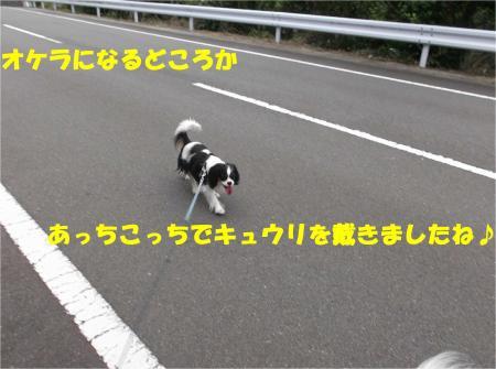 06_convert_20140623160920.jpg