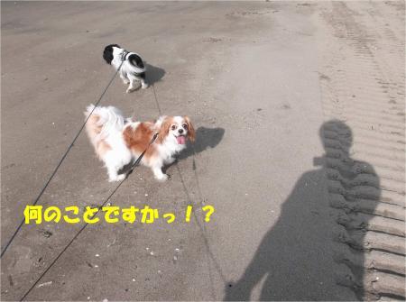 06_convert_20140707181849.jpg