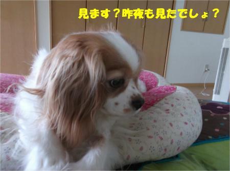 06_convert_20140714180243.jpg