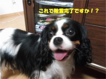 06_convert_20140723223312.jpg