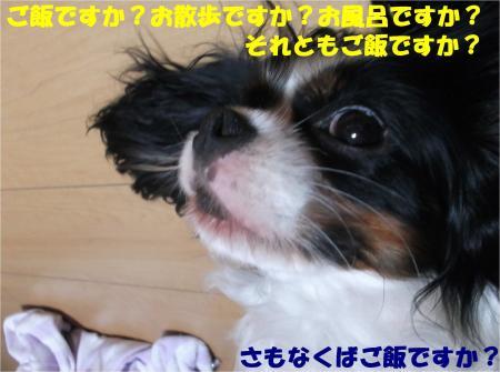 06_convert_20140826172741.jpg