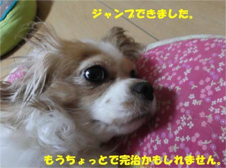 06_convert_20140903180825.jpg