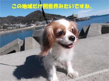 07_convert_20140217165223.jpg